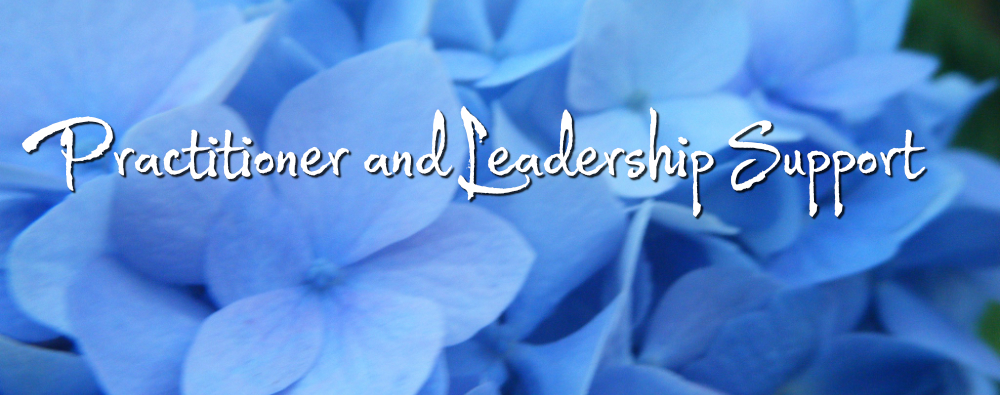 practitioner and leadership support three flame medicine